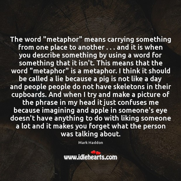 """The word """"metaphor"""" means carrying something from one place to another . . . and Image"""