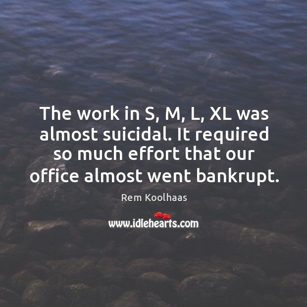 The work in s, m, l, xl was almost suicidal. It required so much effort that our office almost went bankrupt. Image