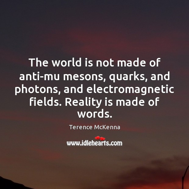 The world is not made of anti-mu mesons, quarks, and photons, and Image
