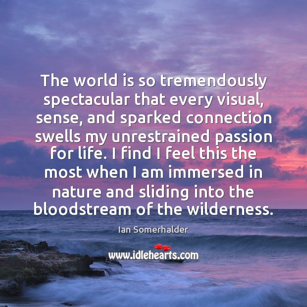Picture Quote by Ian Somerhalder