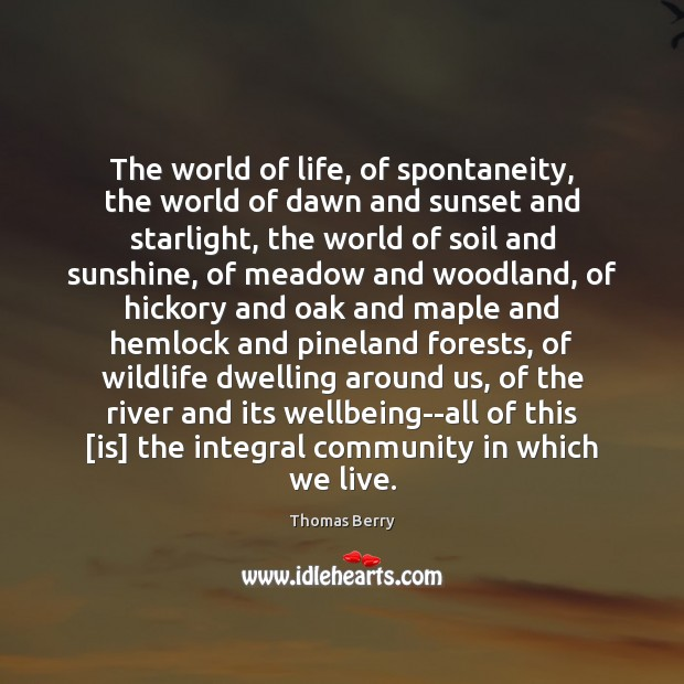 The world of life, of spontaneity, the world of dawn and sunset Thomas Berry Picture Quote
