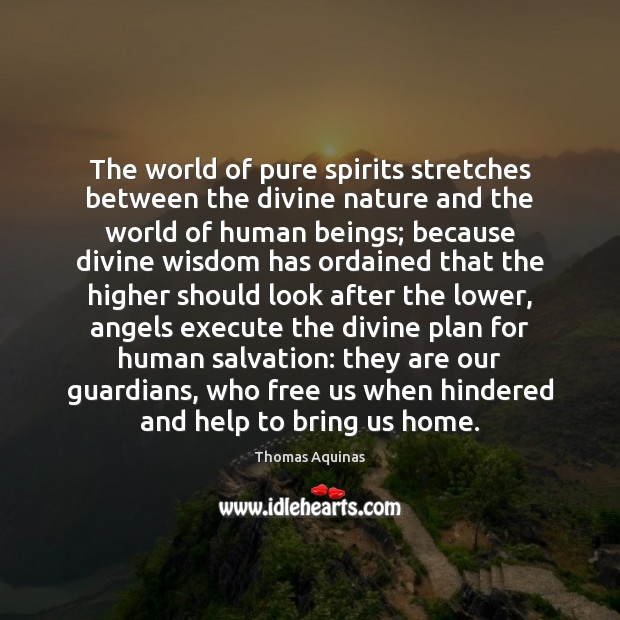 The world of pure spirits stretches between the divine nature and the Image