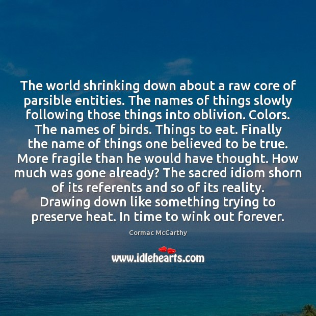 Image, The world shrinking down about a raw core of parsible entities. The