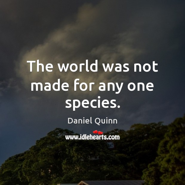 The world was not made for any one species. Daniel Quinn Picture Quote