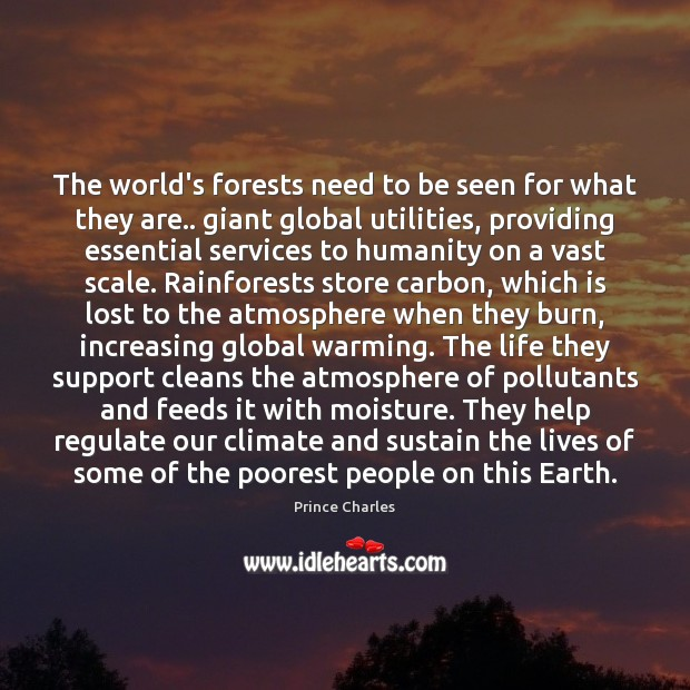 The world's forests need to be seen for what they are.. giant Prince Charles Picture Quote