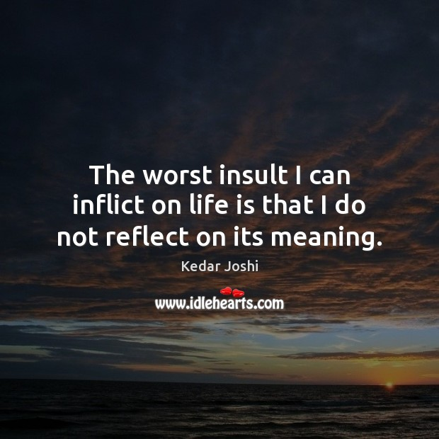 The worst insult I can inflict on life is that I do not reflect on its meaning. Insult Quotes Image