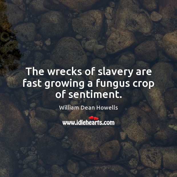 Image, The wrecks of slavery are fast growing a fungus crop of sentiment.