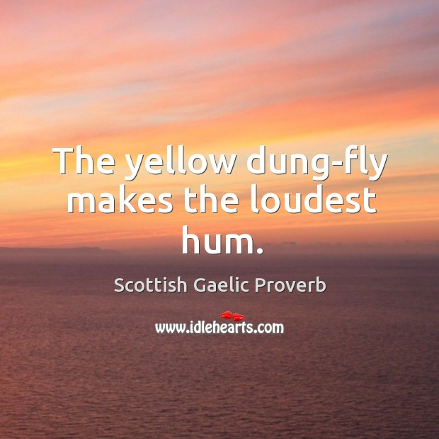 Image, The yellow dung-fly makes the loudest hum.