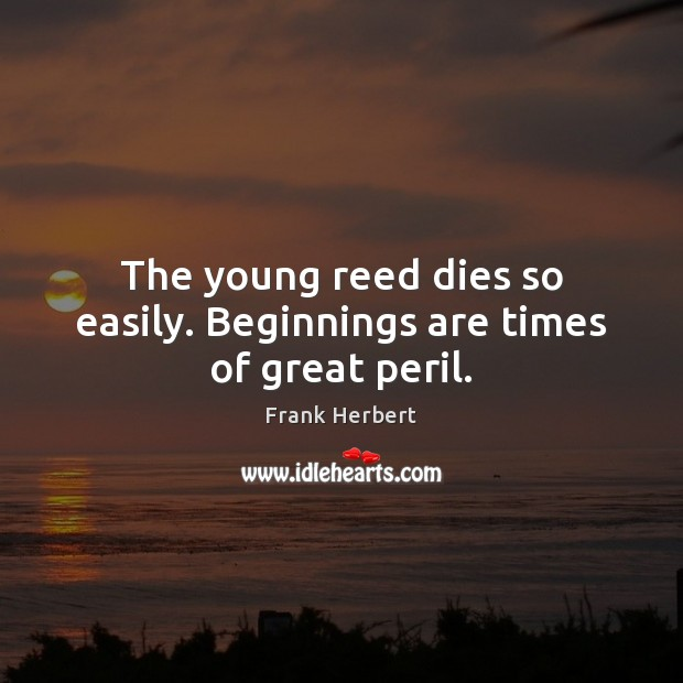 Image, The young reed dies so easily. Beginnings are times of great peril.