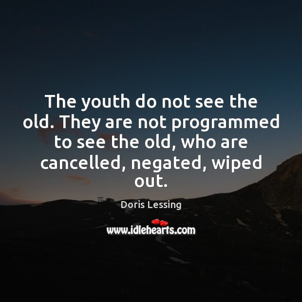 The youth do not see the old. They are not programmed to Doris Lessing Picture Quote