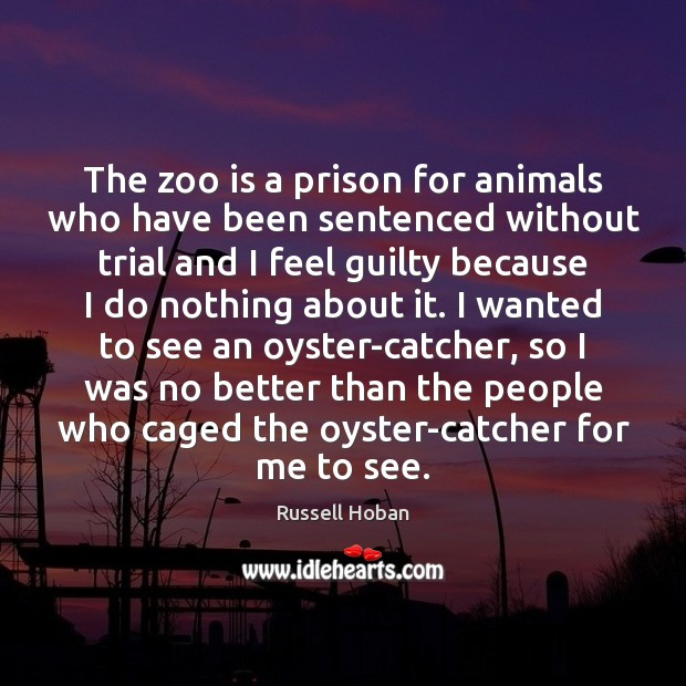 The zoo is a prison for animals who have been sentenced without Guilty Quotes Image