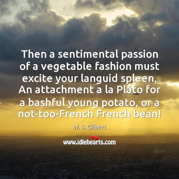 Then a sentimental passion of a vegetable fashion must excite your languid W. S. Gilbert Picture Quote