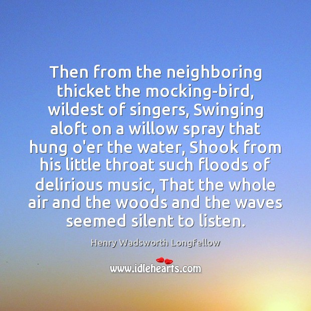 Image, Then from the neighboring thicket the mocking-bird, wildest of singers, Swinging aloft