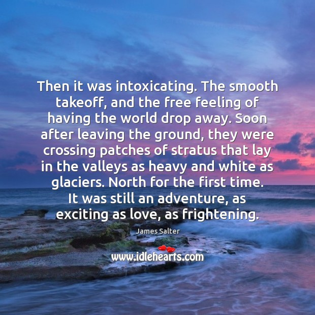 Then it was intoxicating. The smooth takeoff, and the free feeling of James Salter Picture Quote