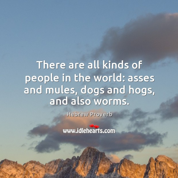 There are all kinds of people in the world: asses and mules, dogs and hogs, and also worms. Hebrew Proverbs Image