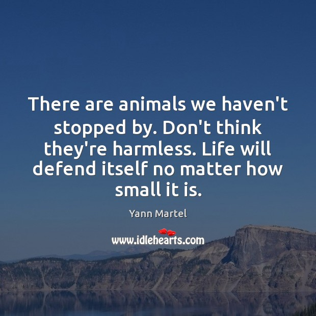 Image, There are animals we haven't stopped by. Don't think they're harmless. Life