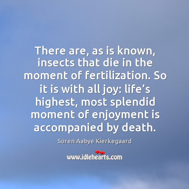 There are, as is known, insects that die in the moment of fertilization. Soren Aabye Kierkegaard Picture Quote