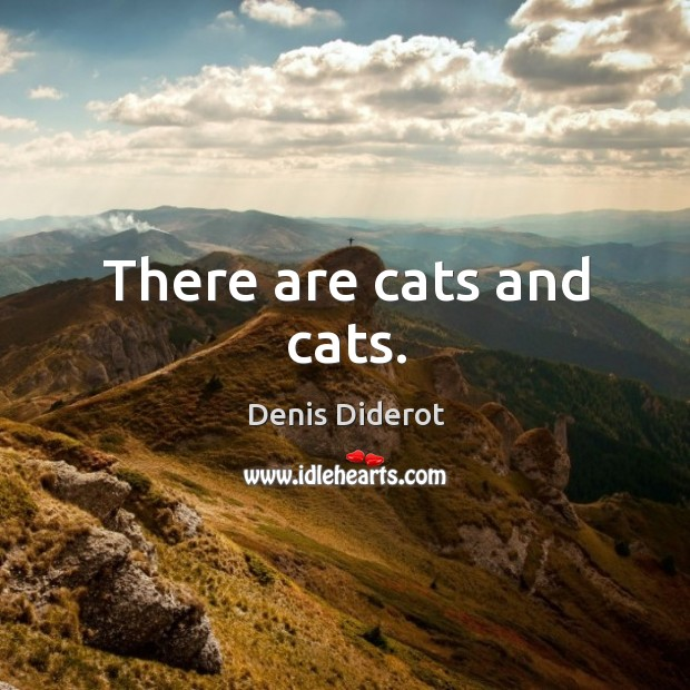 There are cats and cats. Image