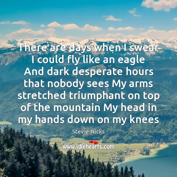 There are days when I swear I could fly like an eagle Stevie Nicks Picture Quote