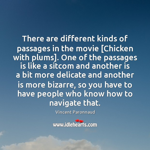 There are different kinds of passages in the movie [Chicken with plums]. Image