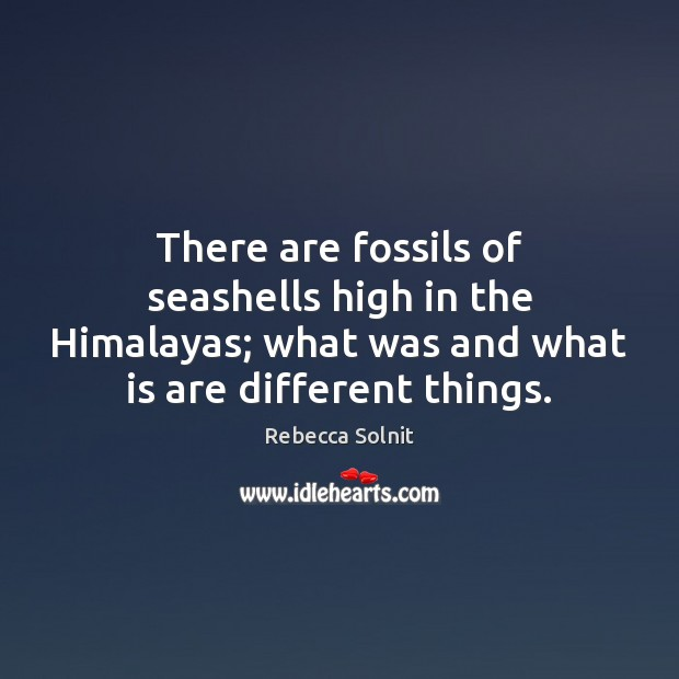 There are fossils of seashells high in the Himalayas; what was and Rebecca Solnit Picture Quote