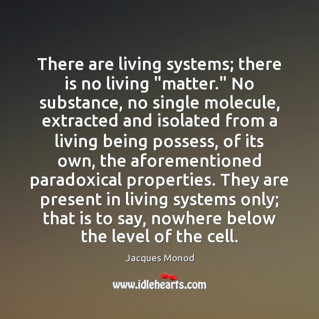 "There are living systems; there is no living ""matter."" No substance, no Image"