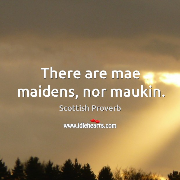 There are mae maidens, nor maukin. Image