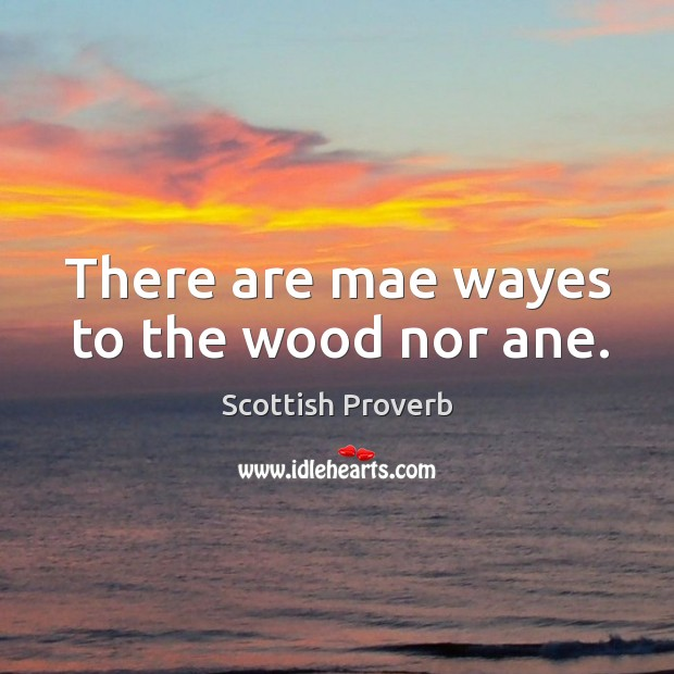 There are mae wayes to the wood nor ane. Image