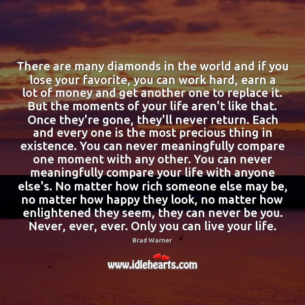 There are many diamonds in the world and if you lose your Brad Warner Picture Quote