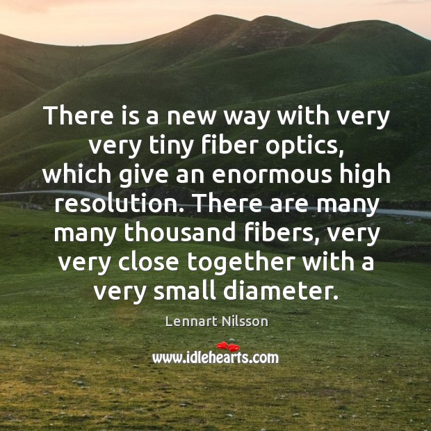 There are many many thousand fibers, very very close together with a very small diameter. Lennart Nilsson Picture Quote
