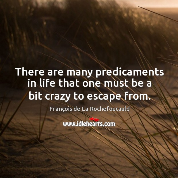 There are many predicaments in life that one must be a bit crazy to escape from. Image
