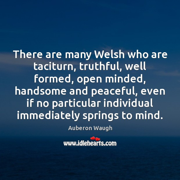 There are many Welsh who are taciturn, truthful, well formed, open minded, Image
