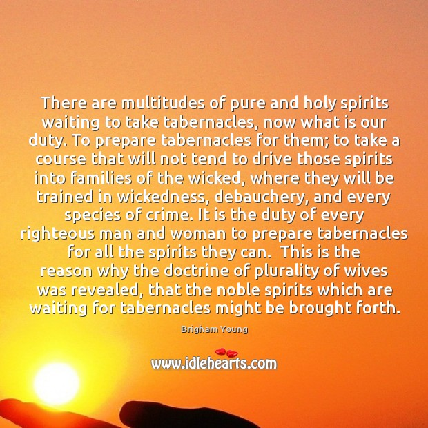 There are multitudes of pure and holy spirits waiting to take tabernacles, Brigham Young Picture Quote