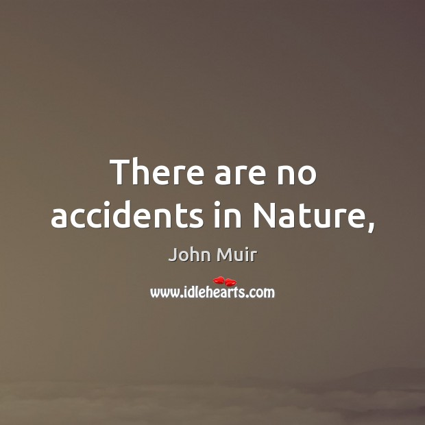 There are no accidents in Nature, John Muir Picture Quote