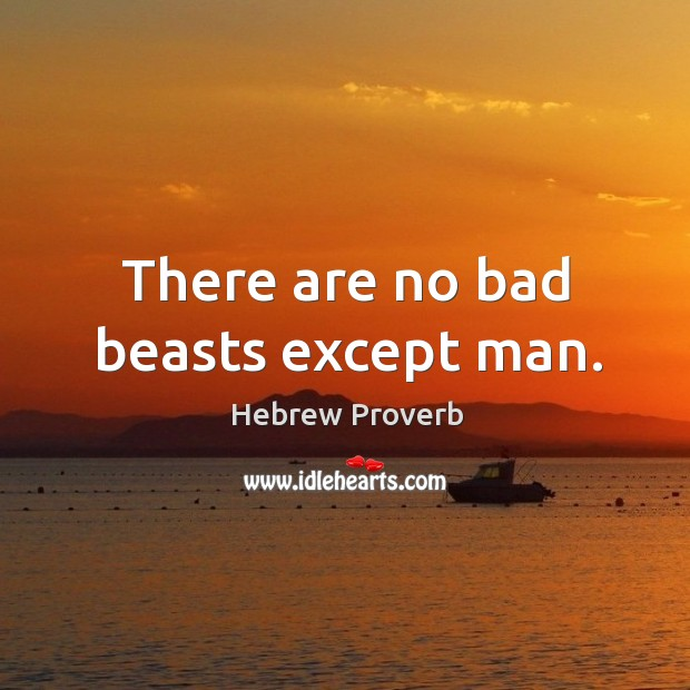 There are no bad beasts except man. Hebrew Proverbs Image