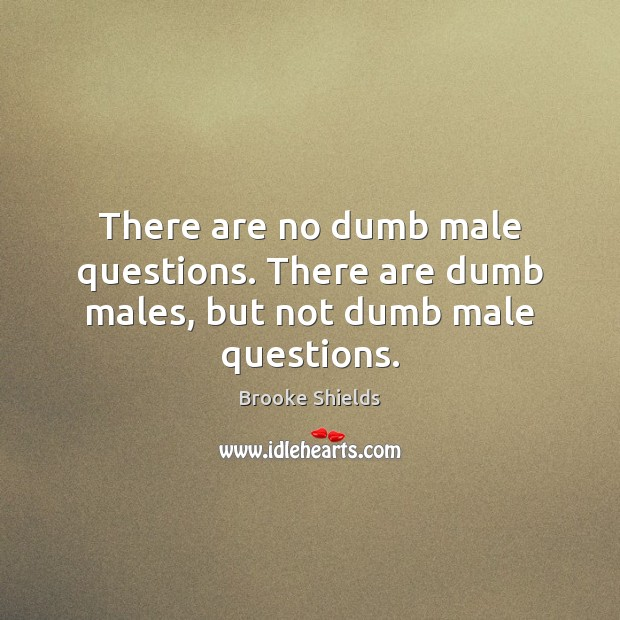 Image, There are no dumb male questions. There are dumb males, but not dumb male questions.
