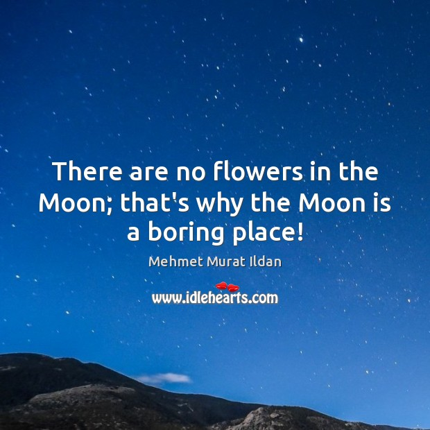 Image, There are no flowers in the Moon; that's why the Moon is a boring place!