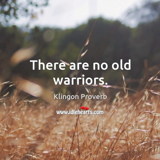 There are no old warriors. Klingon Proverbs Image