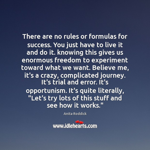 Image, There are no rules or formulas for success. You just have to