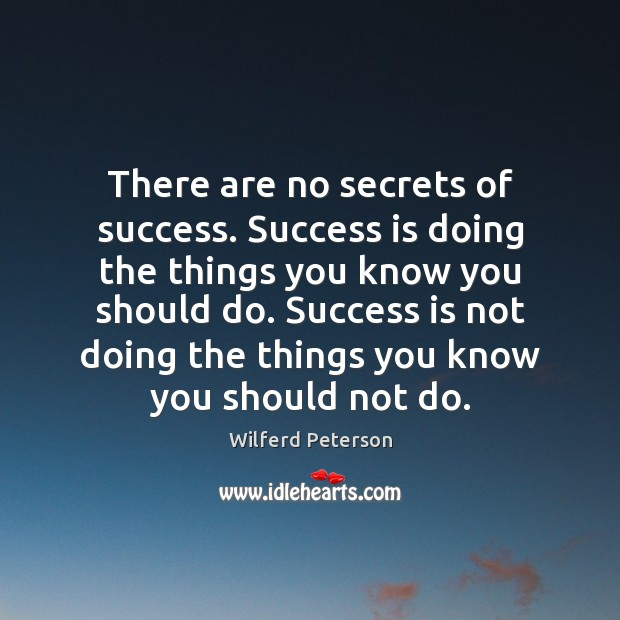 Image, There are no secrets of success. Success is doing the things you