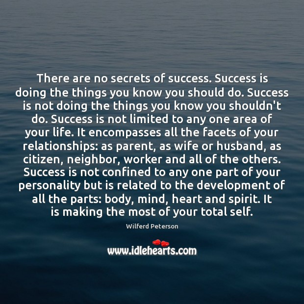 There are no secrets of success. Success is doing the things you Wilferd Peterson Picture Quote