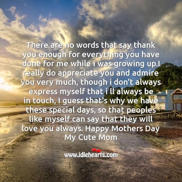 There are no words that say thank you Mother's Day Quotes Image