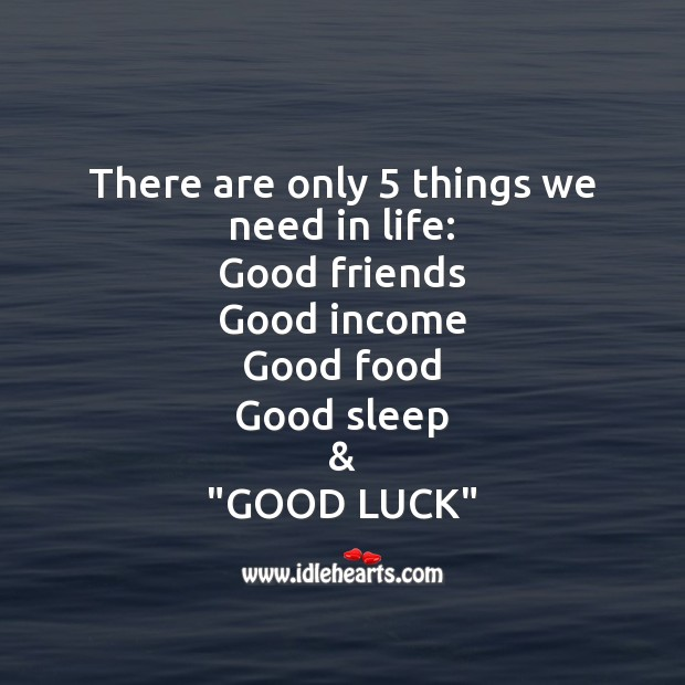 There are only 5 things we need in life Image