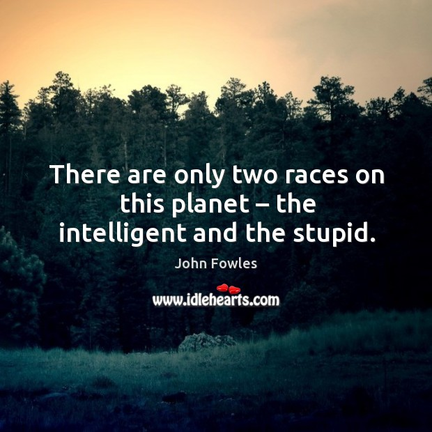 There are only two races on this planet – the intelligent and the stupid. Image