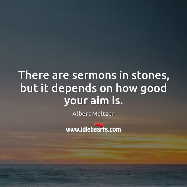 Image, There are sermons in stones, but it depends on how good your aim is.