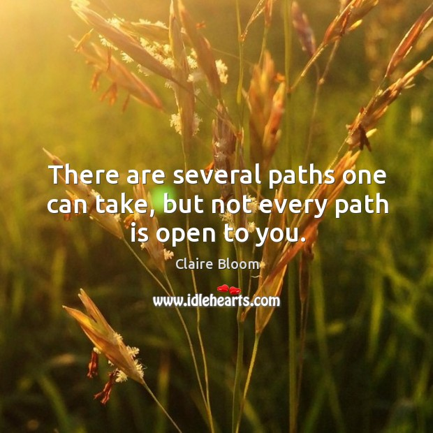 Image, There are several paths one can take, but not every path is open to you.
