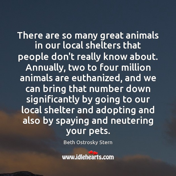 Image, There are so many great animals in our local shelters that people