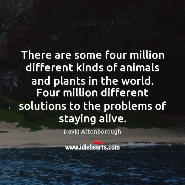 There are some four million different kinds of animals and plants in Image