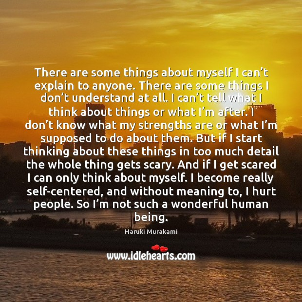 There are some things about myself I can't explain to anyone. Haruki Murakami Picture Quote