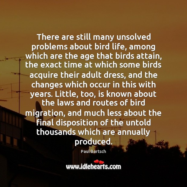 Image, There are still many unsolved problems about bird life, among which are
